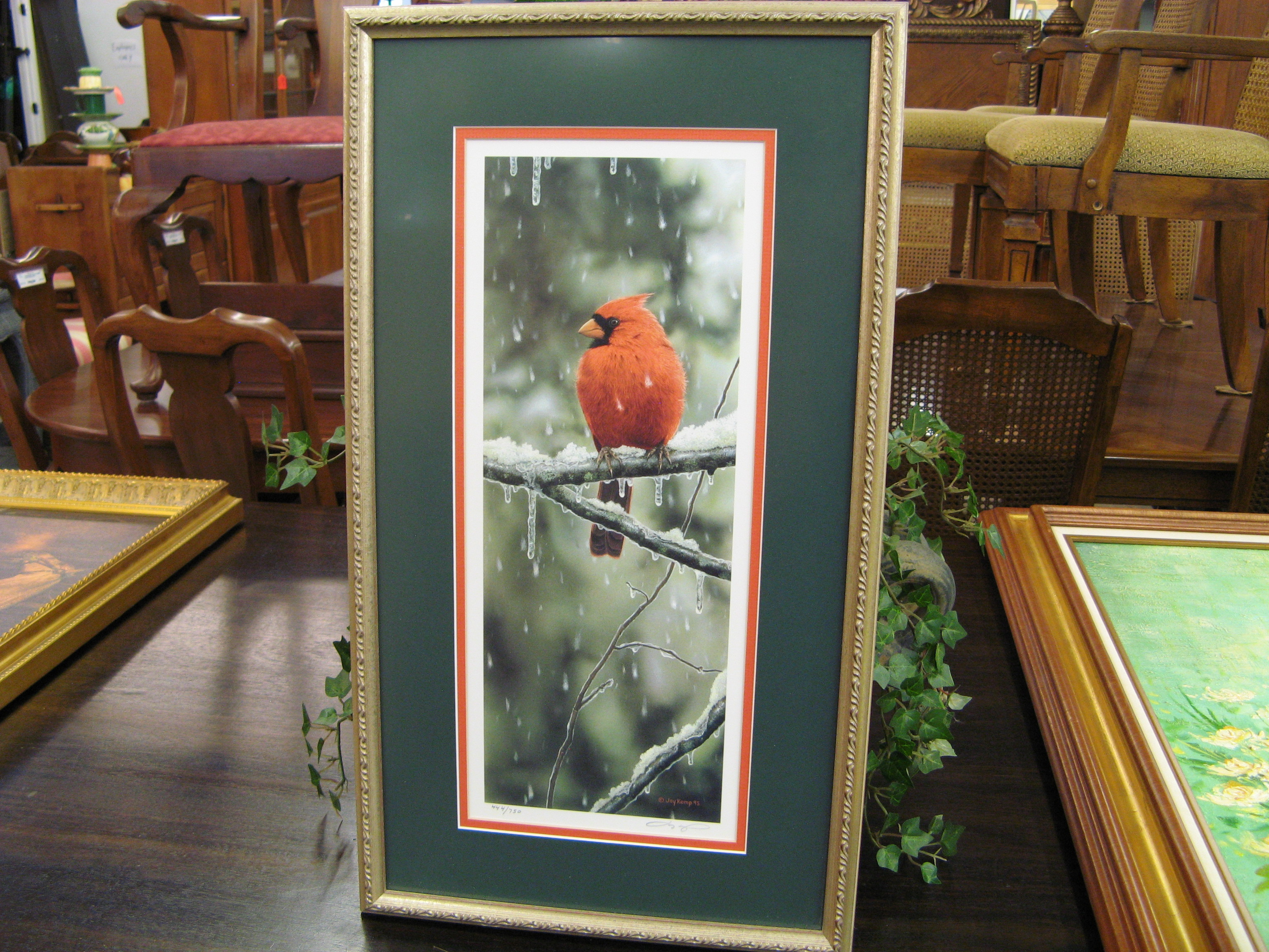 Cardinal Photo, Signed & Numbered, by Jay Kemp